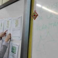 el museo de las plantas