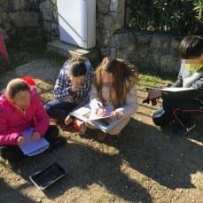 procesos de investigación en el huerto