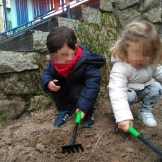 preparando la tierra para el tomillo