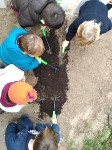 abonando el suelo para las aromáticas