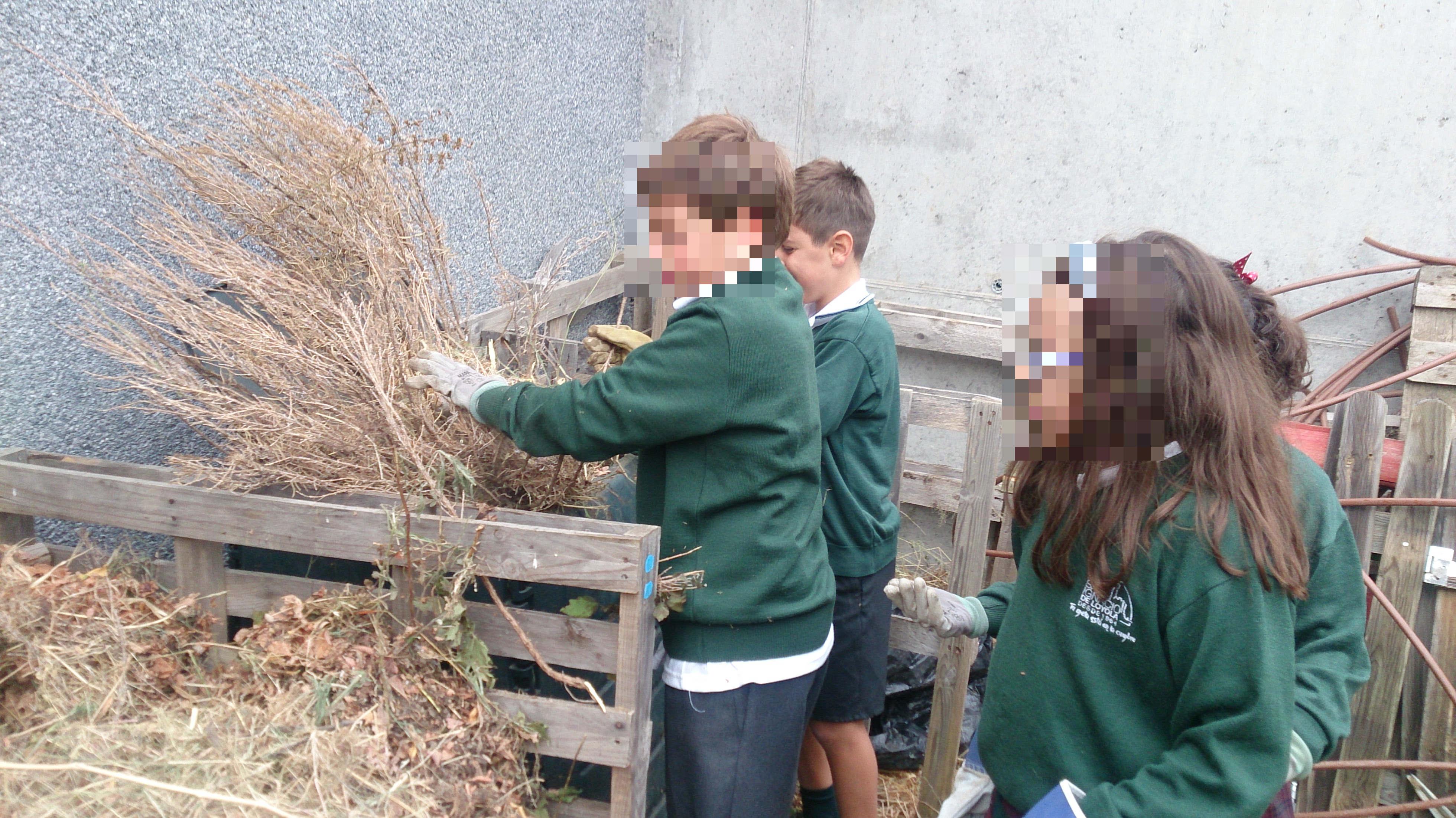 Equipo compost