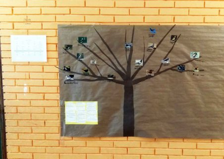 Un árbol en el pasillo con las aves más comunes