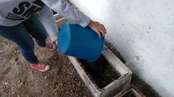 nueva jardinera